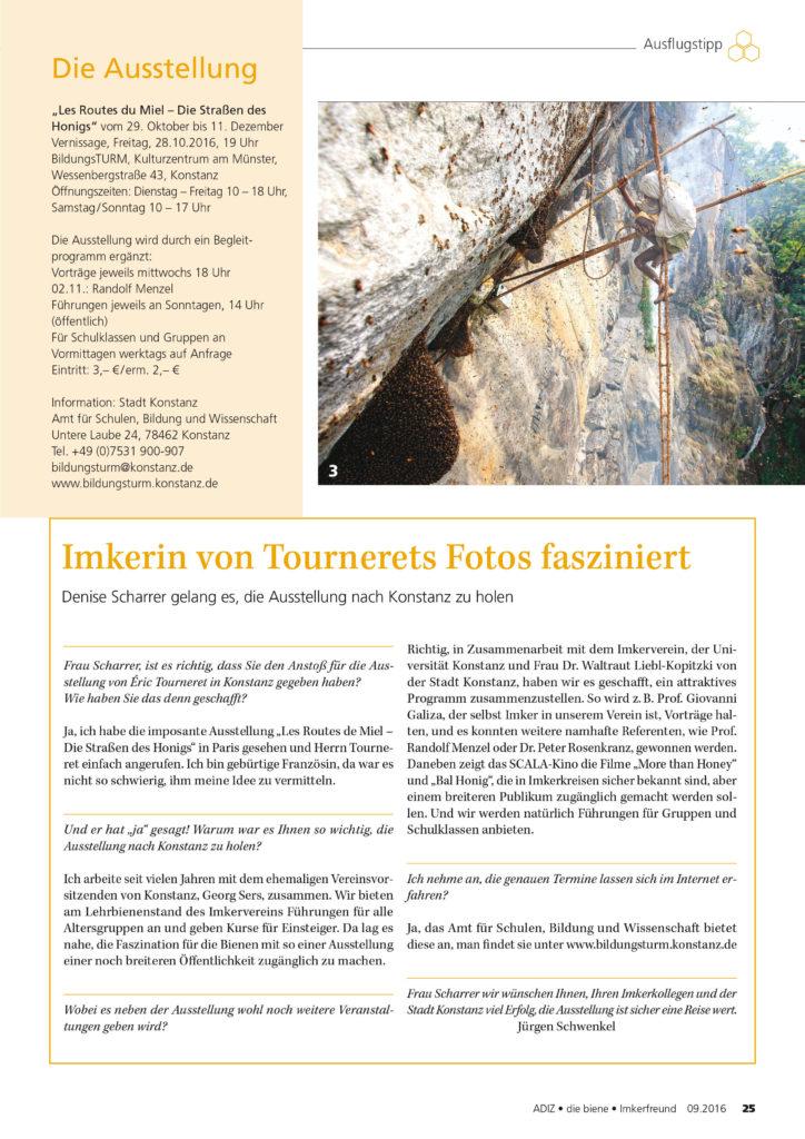 adiz-die-biene-2-09-2016